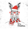 christmas hipster fashion animal rabbit vector image vector image