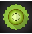 Kiwi Fruit Flat Icon with long shadow vector image vector image