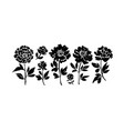 peony and anemones hand drawn paint set vector image
