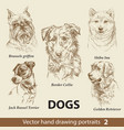 set hand drawing dogs 2 vector image vector image