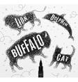 Tangled line buffalo black vector image vector image