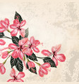 background or with hibiscus flowers in retro style vector image vector image