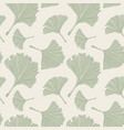 ginkgo biloba plant line art pale sage colored vector image vector image