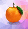 Orange polygon vector image