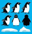 set penguins vector image vector image