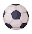 soccer football ball fitness and sports equipment vector image
