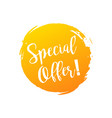 special offer discount banner summer style vector image vector image