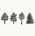 vintage collection forest trees vector image vector image