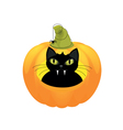 black cat halloween pumpkin vector image vector image