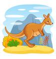 cute kangaroos jumping through sand vector image