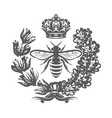 monochrome with bee imperial crown vector image