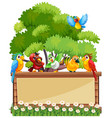 border template wtih wild parrots vector image vector image