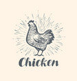 chicken logo or label farm animal sketch vintage vector image vector image