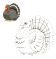 Connect the dots game turkey vector image vector image