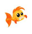 cute frightened goldfish funny fish cartoon vector image vector image