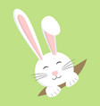 easter rabbit white bunny design cartoon vector image