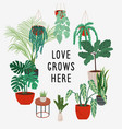 hand drawn card with quote love grows here vector image vector image