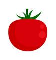organic tomato icon flat isolated vector image vector image