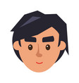 physiognomy of boy brunet haired man face front vector image