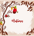 autumn leafs and fruits frame