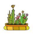 cactus with black contour vector image