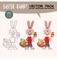easter rabbit with painted eggs vector image vector image