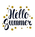 hello summer calligraphy season banner design vector image
