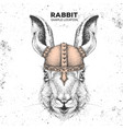 hipster animal rabbit wearing a viking helmet vector image