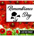 remembrance day lest we forget red poppy flowers