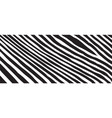 wild zebra wave pattern with black and white vector image