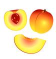 yellow orange peach and half peach and slice vector image