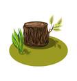 a cartoon big tree stump vector image