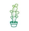 cactus in pot draw vector image
