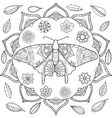 detailed ornamental sketch a moth vector image vector image