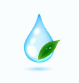 drop of water with green leaf vector image vector image