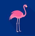 flamingo cartoon flat icon brazil vector image vector image