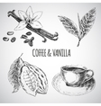 hand drawn set with dessert spices Vintage vector image