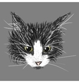 Black and white cat sketch vector image