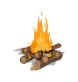 Bonfires flame isolated vector image vector image