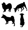 dogs silhouette 2 vector image