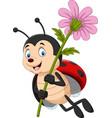 cartoon cute ladybug holding flower vector image vector image