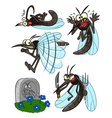 mosquito set vector image