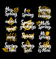 spring time hand drawn quotes vector image vector image