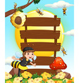 Wooden signs and bees flying in the garden vector image vector image