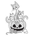 halloween pumpkin and cats doodle coloring book vector image vector image