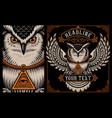 owl on dark background vector image vector image