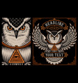 owl on the dark background vector image