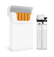 cigarettes pack and lighter set vector image