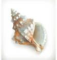 Tropical shell icon vector image