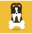 dog pet bone icon vector image vector image